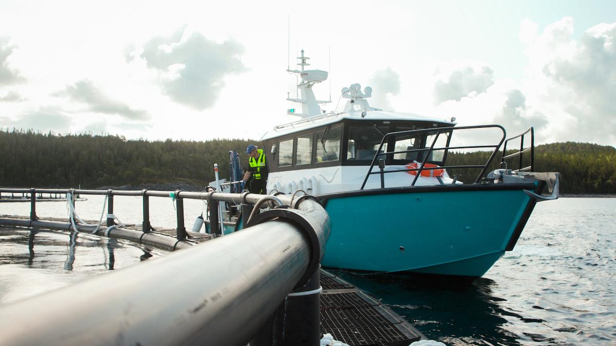 ansatt på båt