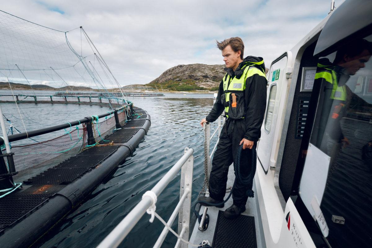 Mann som tår på båt og ser på en merd