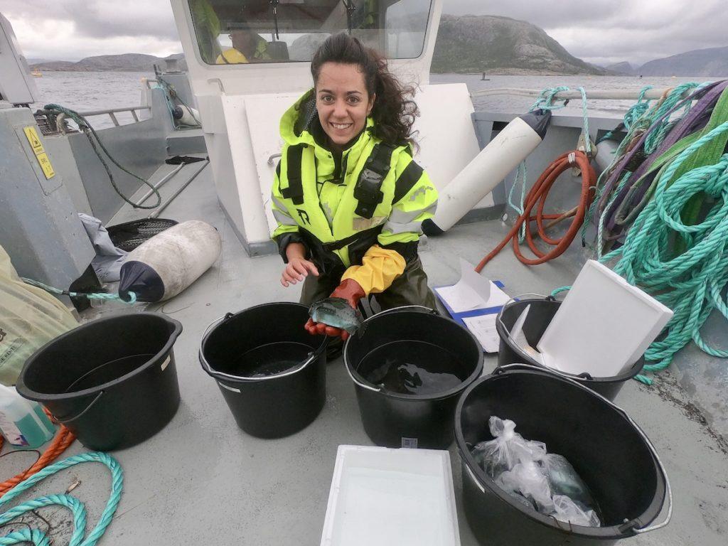 Kvinne undersøker fisk