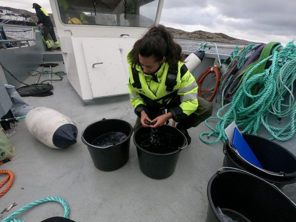 Kvinne sitter på et båtdekk med to bøtter fulle av vann